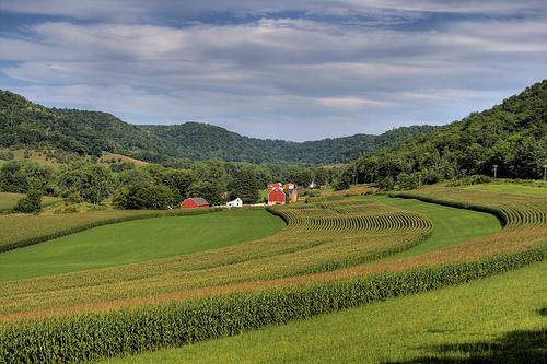 L'assurance exploitation agricole
